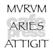 murum_aries_attigit_mugs