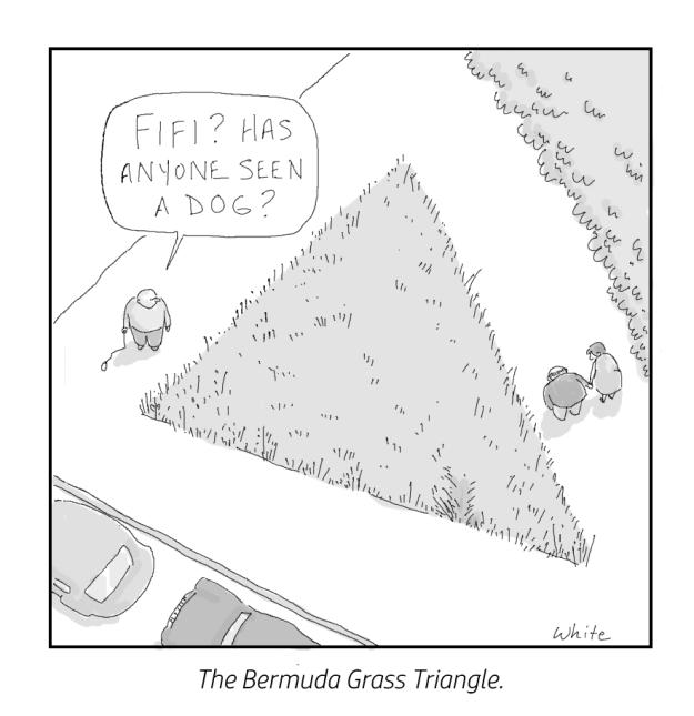 7-2016-bermuda-grass-triangle